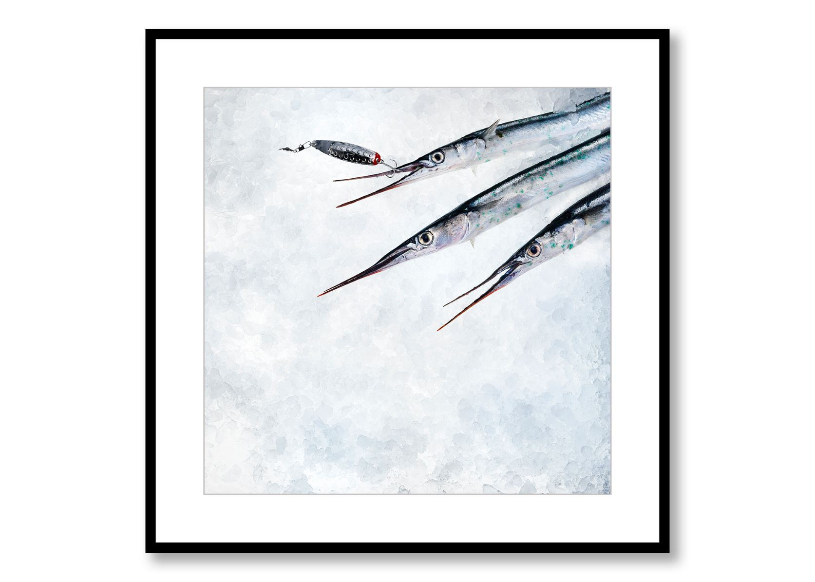 Horn pike, Food Art, Prints for Sale. Photo by Fredrik Rege