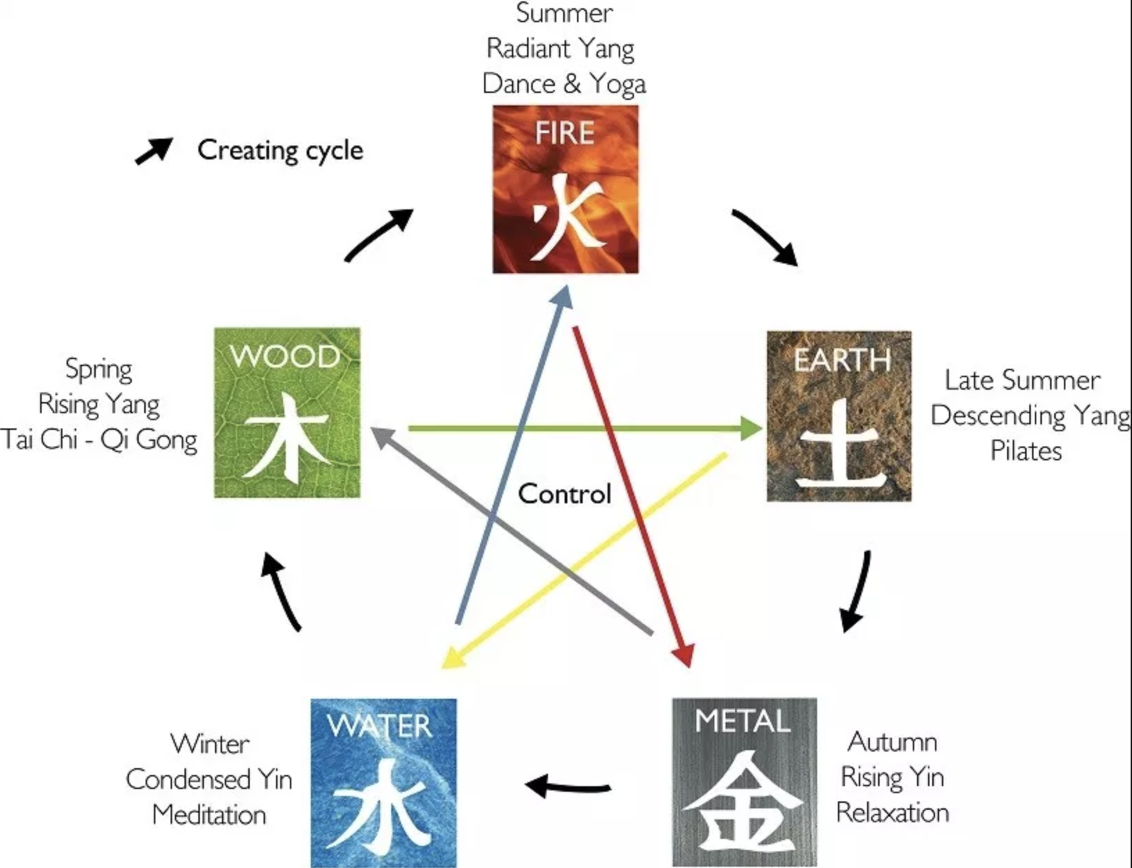 1:1 Introduction To Traditional Chinese Medicine – Modul 1 of the Teacher training Course