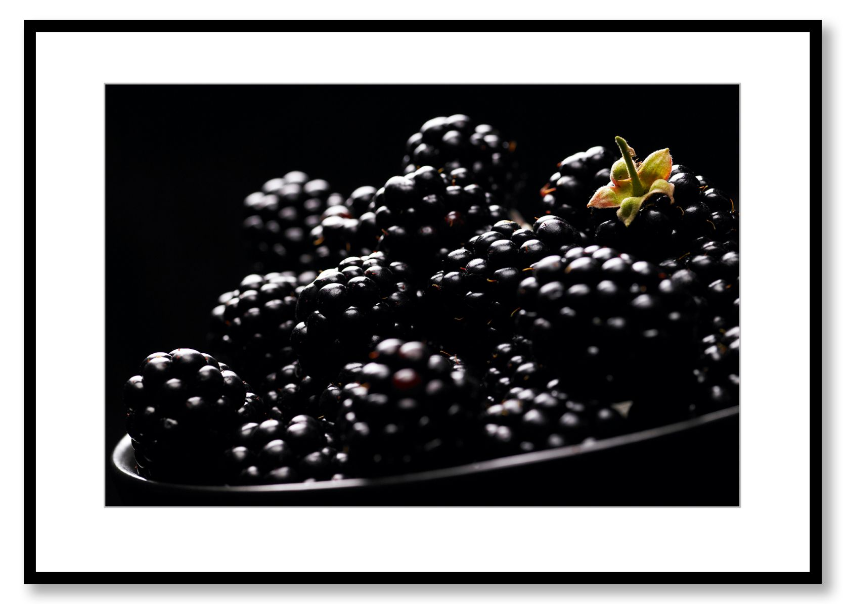Blackberries, Food Art. Prints for Sale. Photo by Fredrik Rege