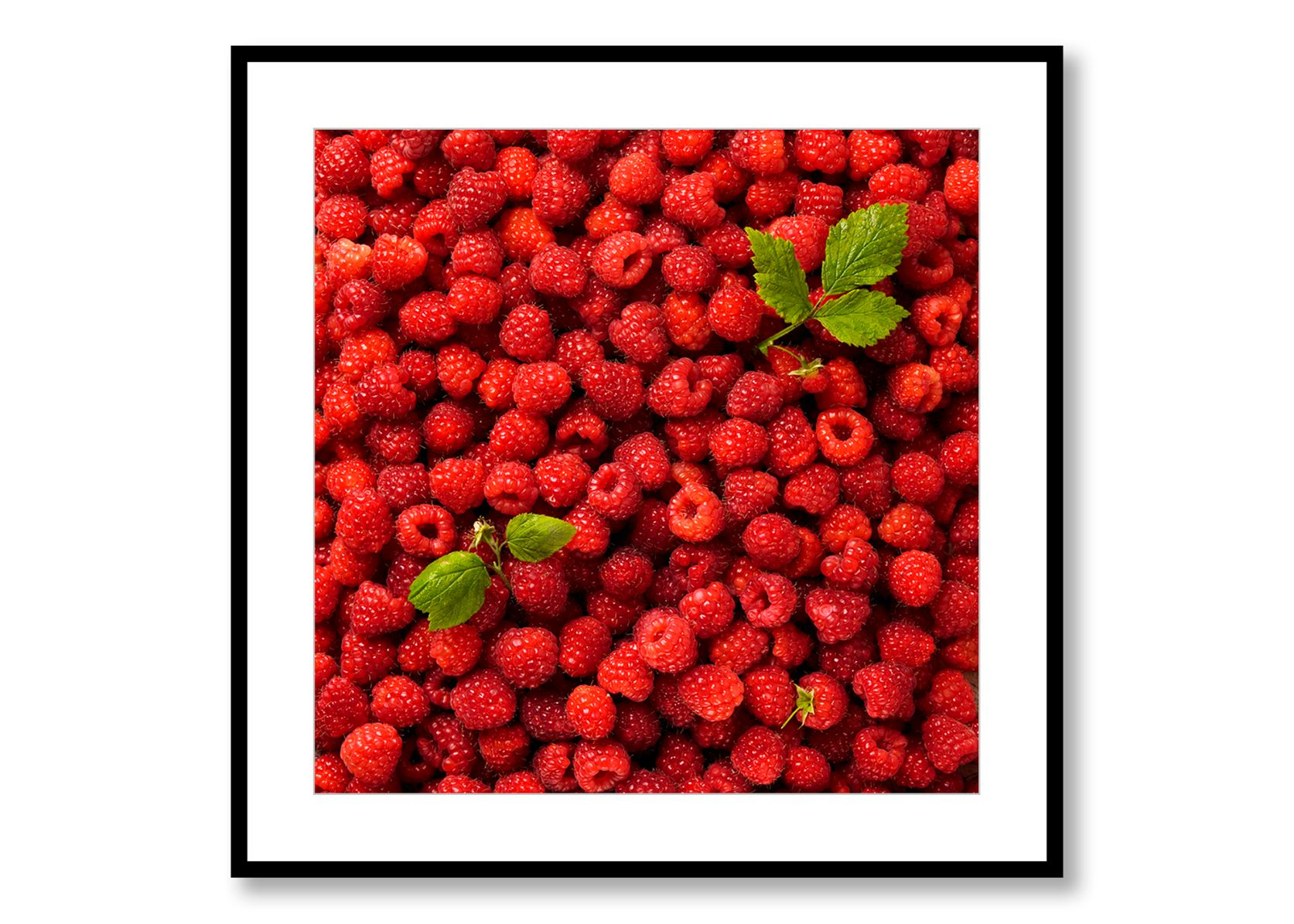 Raspberries. Food Art. Prints for Sale. Photo by Fredrik Rege